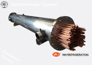 WH Best Sellers Copper Tubing Shell Factory Coil Evaporator 10kw Industrial Heat Exchanger